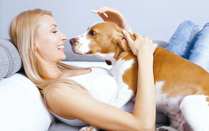 Czego nierobić psu ikotu