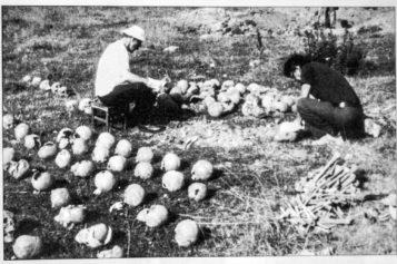 Wołyń – przemilczane ludobójstwo