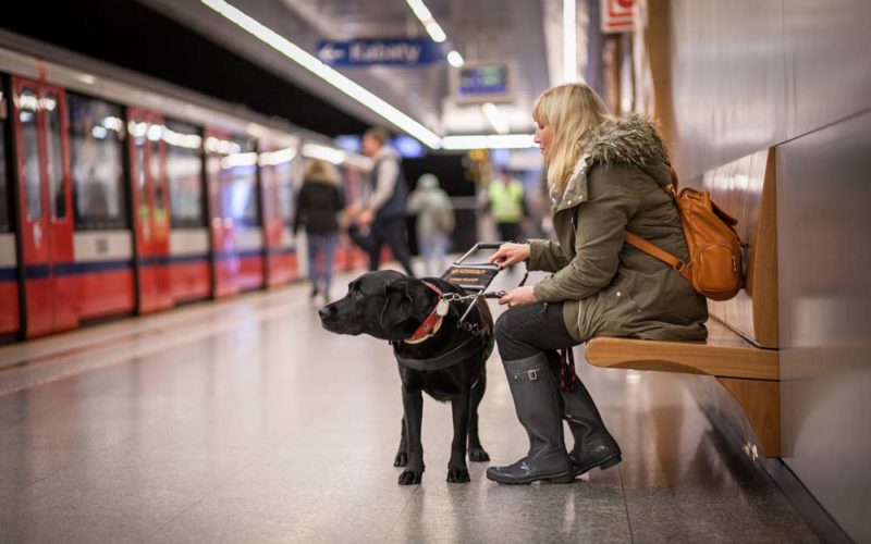 Psia osoba
