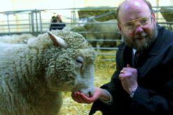 Dolly – owca, którawstrząsnęła światem nauki