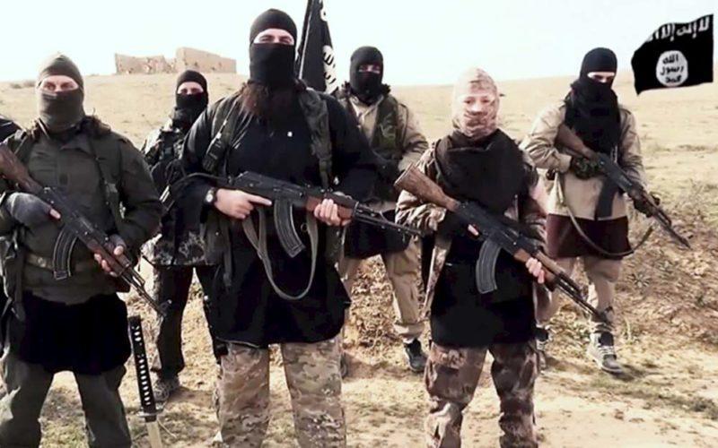 Skąd się biorą  terroryści?