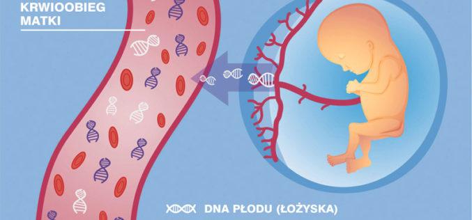 Kilka kropli krwi wystarcza, bywykluczyć choroby genetyczne płodu