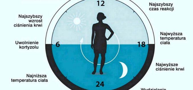 Nowy stary zegar biologiczny