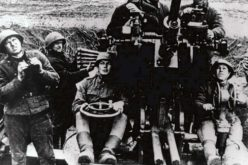 Darnica 1944