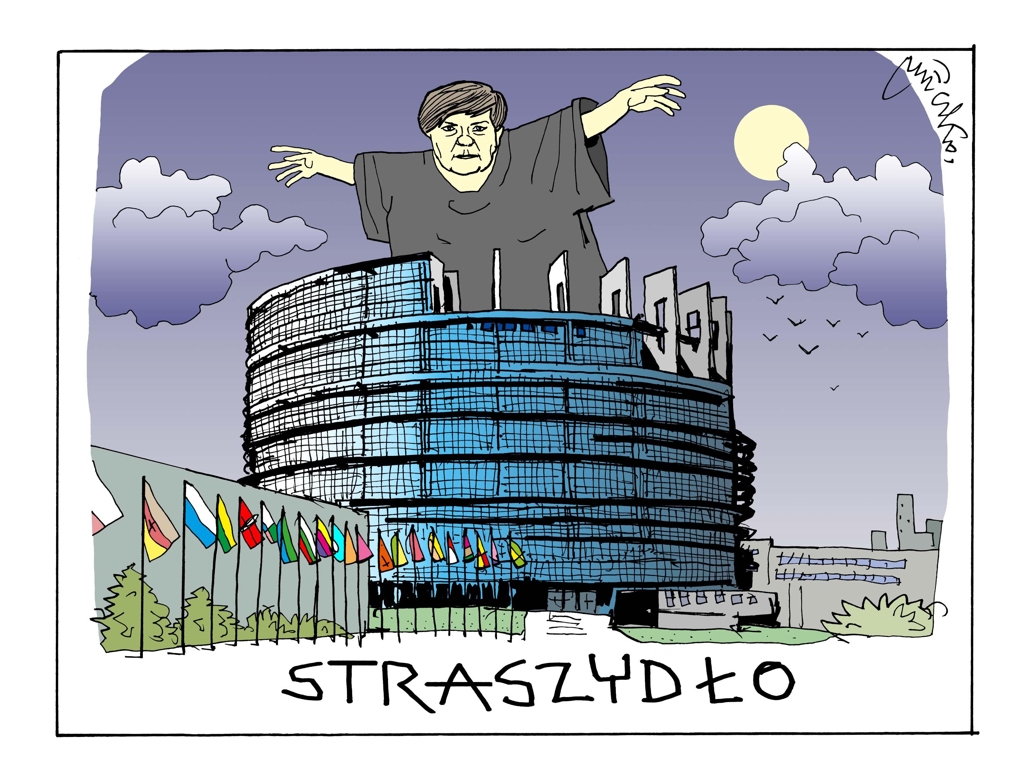 Rysunek A. Mleczki z PRZEGLĄDU nr 30/2019