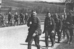 Brygada hitlerowskich kolaborantów
