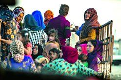 Kurdyjska puszka Pandory