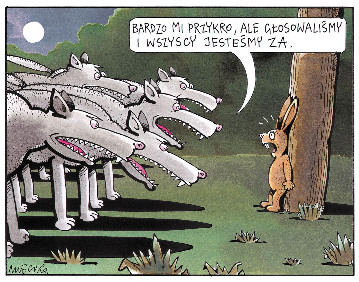 Rysunek A. Mleczki z PRZEGLĄDU nr 49/2019