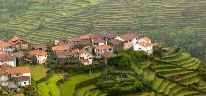 Lit – skarb, którydzieli Portugalczyków