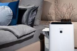 Oczyszczacz powietrza, czyli Twójsojusznik wwalce zesmogiem, grzybami ipleśnią wmieszkaniu
