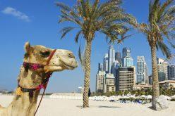 Co warto zobaczyć wZjednoczonych Emiratach Arabskich? Dubaj – miasto pełne atrakcji