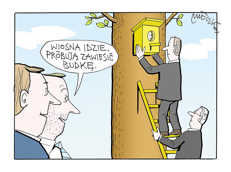 Rysunek A. Mleczki z PRZEGLĄDU nr 20/2021