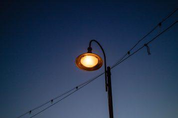 LED-y dziesiątkują owady
