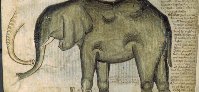 Średniowieczne zoo
